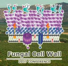 Fungal Cell Wall 2017 Conference