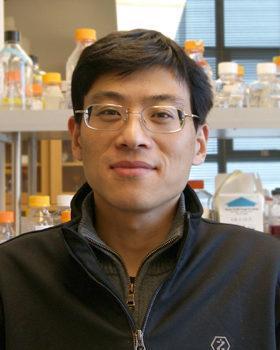 Jiuhai Zhao